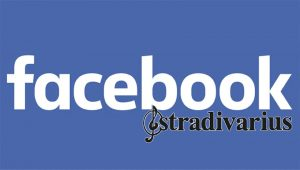 Facebook Stradivarius